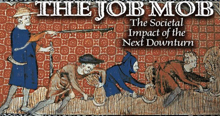THE JOB MOB The Societal Impact of the Next Downturn, Danielle DiMartino Booth